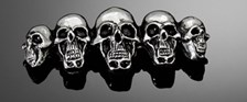 HIGHWAY HAWK Ecussons 'Skull family'