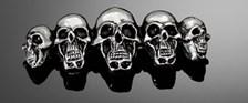 HIGHWAY HAWK Emblems 'Skull family'