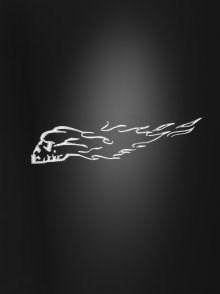 HIGHWAY HAWK Custom bike art decals Burning skull L+R