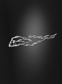 HIGHWAY HAWK Custom bike art decals Burning skull L+R