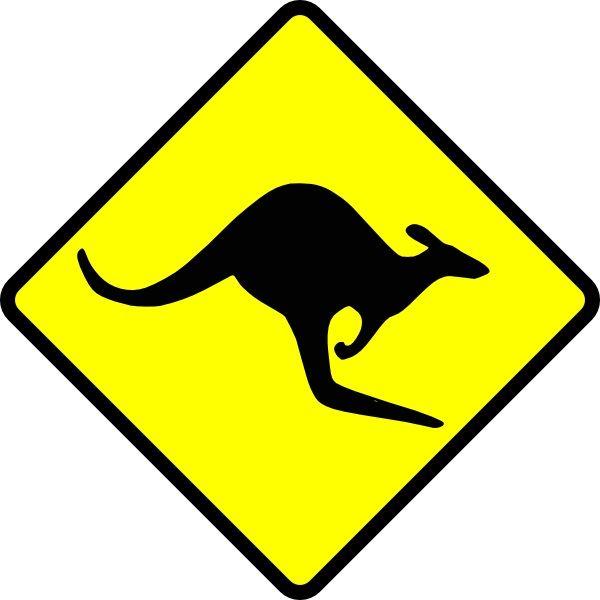 Cuir  kangourou